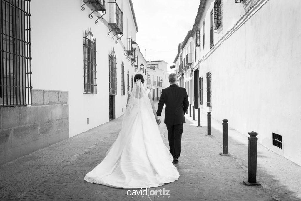 fotógrafo de boda Eva y Juanan salones el Paseo 1233